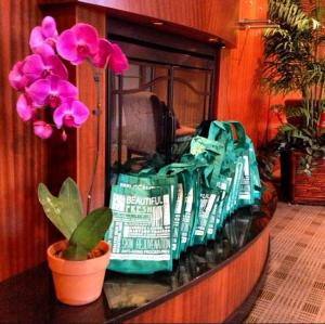 Gift bags from Dr. Tracy M. Campbell filled with beauty and skin protective products.