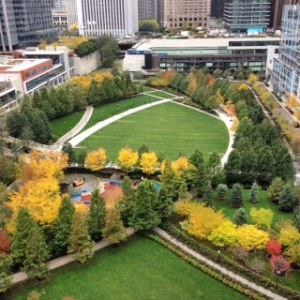 Lakeshore East park FALL